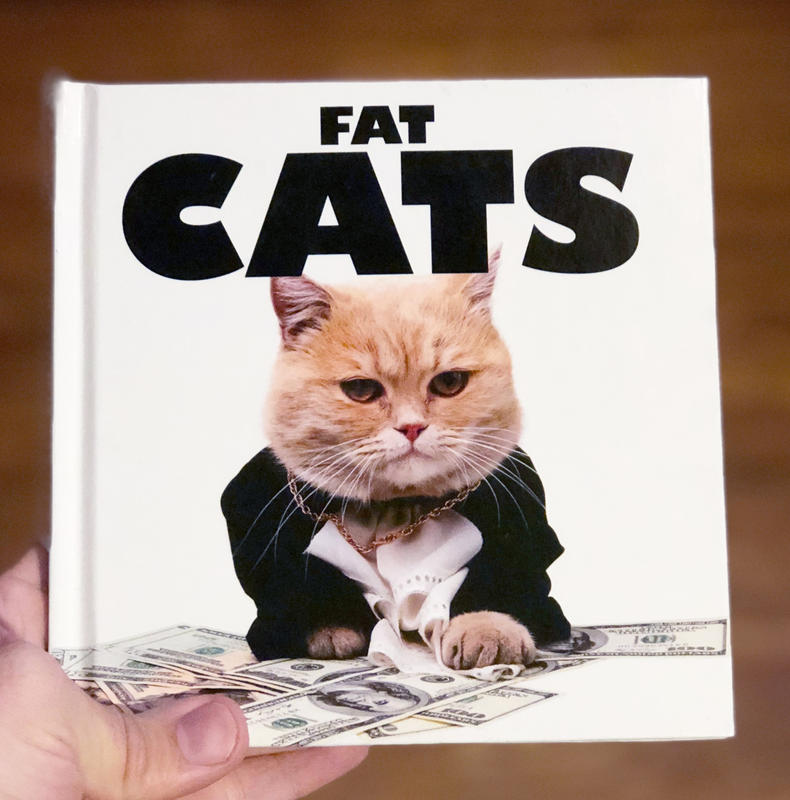 A book cover of a cat in a business suit crawling on some money