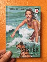 How it Works: The Sister (A Ladybird Book)