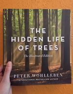 Hidden Life of Trees: The Illustrated Edition