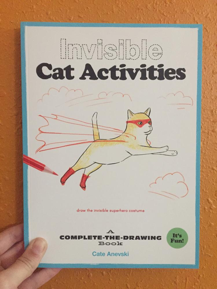Invisible Cat Activities by Cate Anevski [Supercat flies across the sky]