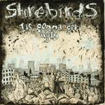 Shorebirds: It's Gonna Get Ugly