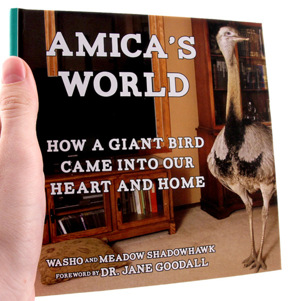 A book with a photo of Amica, a rhea, which is related to ostriches and emus, living contentedly indoors