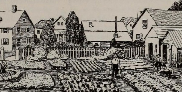 a vintage line drawing of a backyard farm