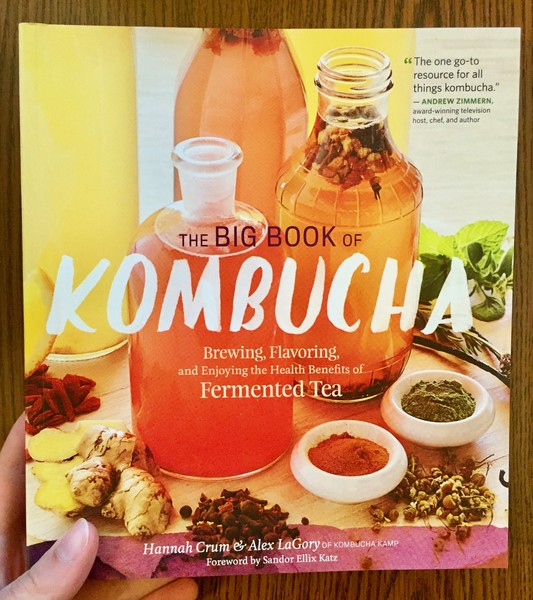 bottles of kombucha surrounded by kombucha ingredients.