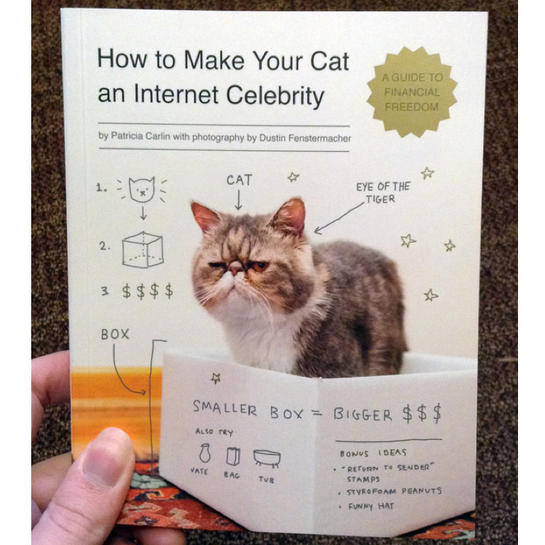 How To Make Your Cat an Internet Celebrity by Dustin Fenstermacher and Patricia Carlin