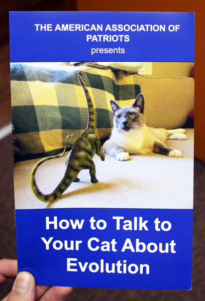 How to Talk to Your Cat About Evolution zine cover