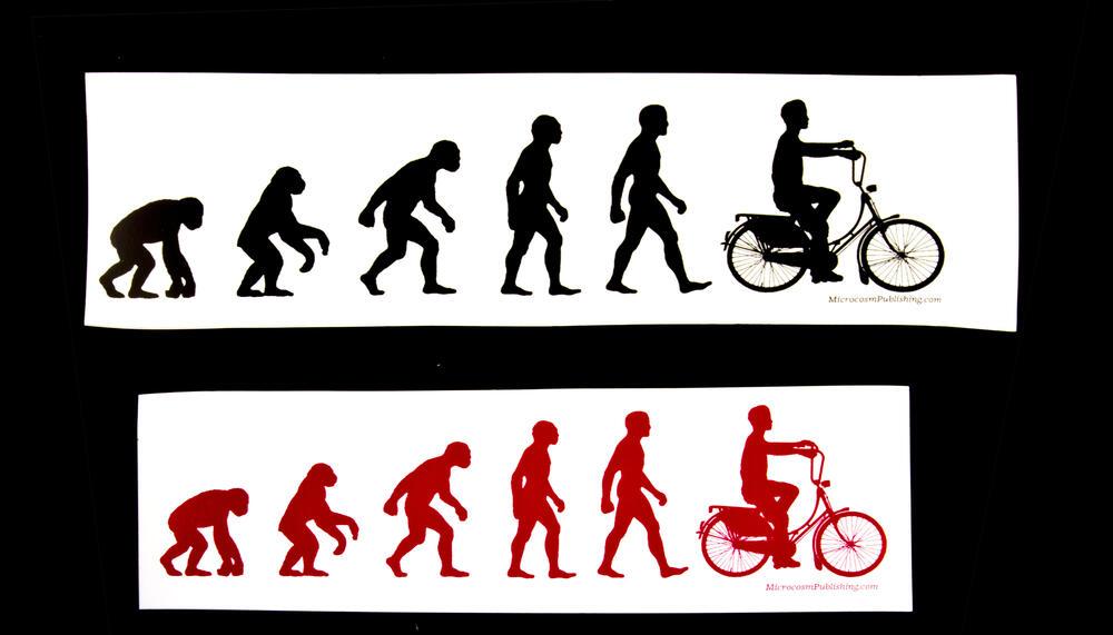 Sticker #310: Evolution Choppa