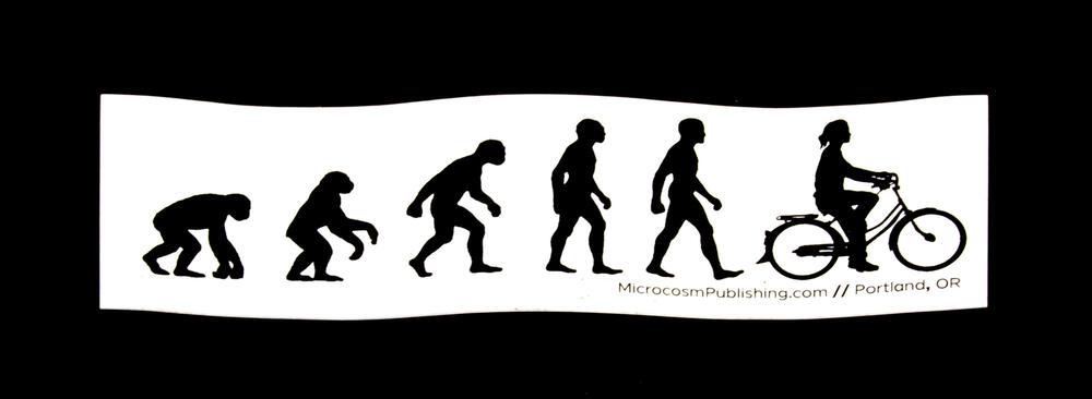 Sticker #299: Evolution Gal