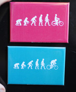 Evolution Bicycle magnet