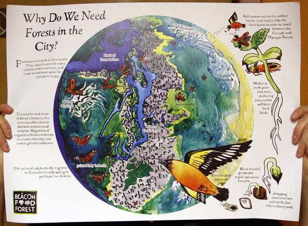 Why do we need forests in the city poster