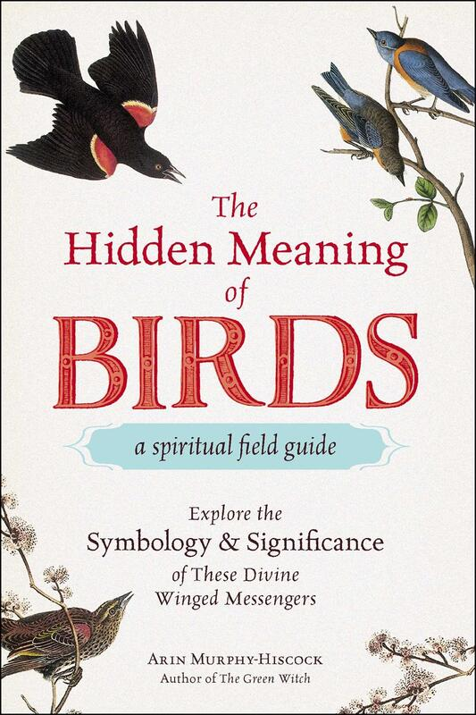 The Hidden Meaning of Birds: A Spiritual Field Guide
