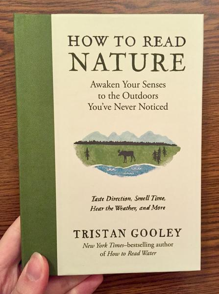 Cover of How to Read Nature: Awaken Your Senses to the Outdoors You've Never Noticed - which features a small drawing of a lakeside below the title