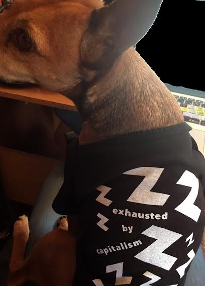 A dog wearing an Exhausted by Capitalism Onesie