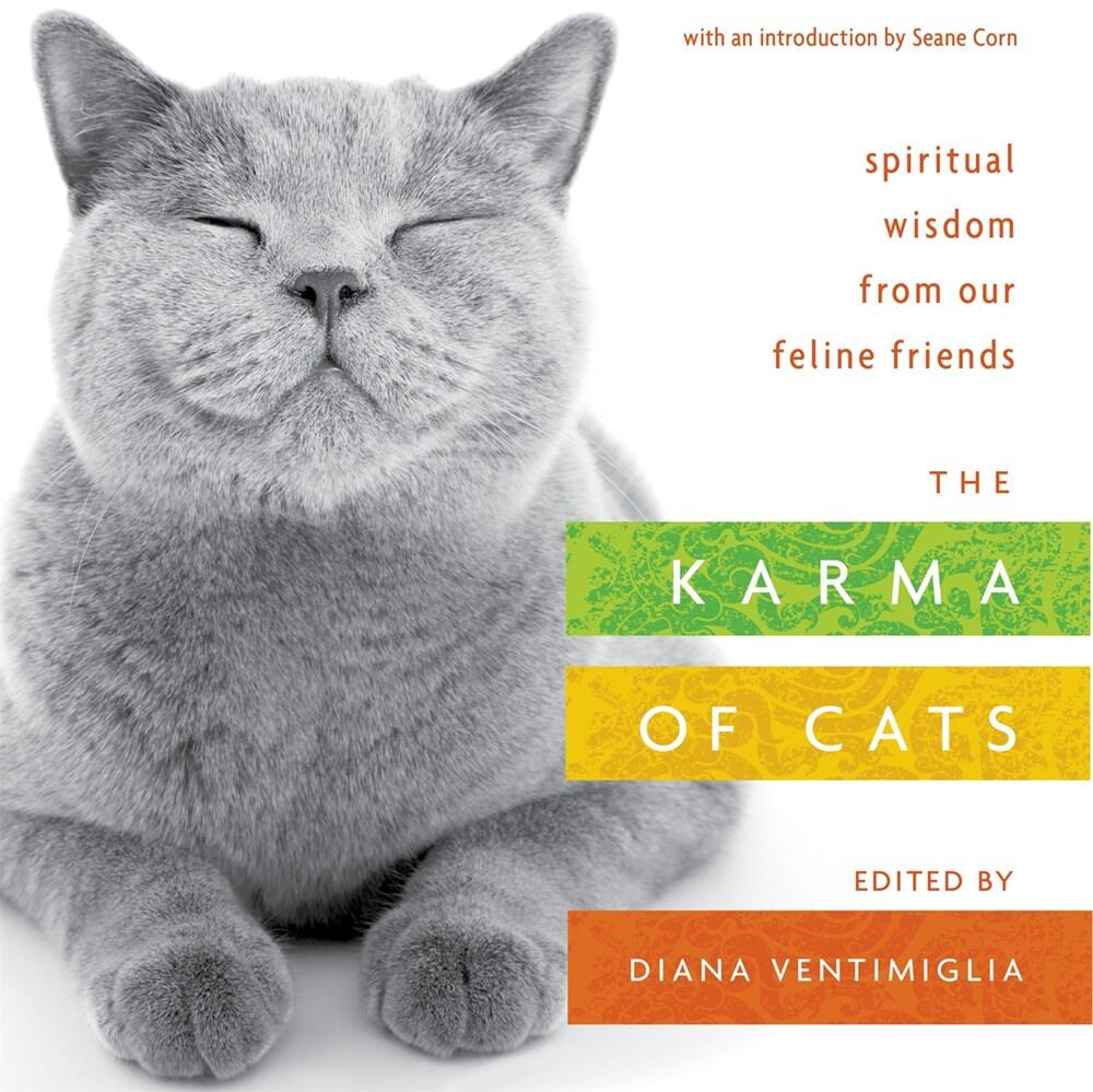The Karma of Cats: Spiritual Wisdom from Our Feline Friends