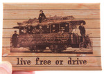 Live Free or Drive (train) Magnet
