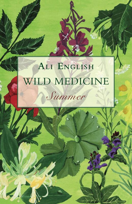 Wild Medicine - Summer: A Summer of Wild Hedgerow Medicine with Recipes and Anecdotes blowup
